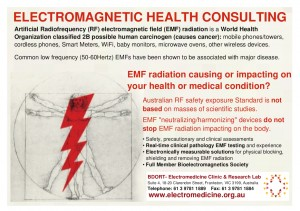 Electromagnetic Health Consulting